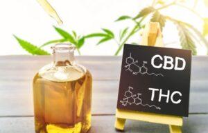 CBD olaj egy univerzális alkalmazás